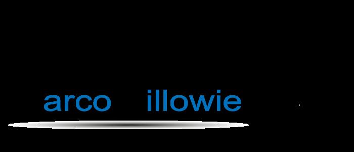 IT-Service Billowie Logo